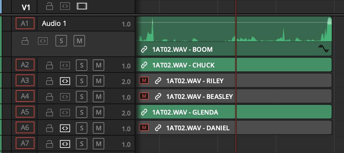 Adobe y Avid deben admitir metadatos iXML para canales de audio en el timeline